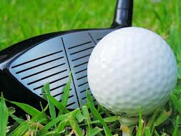 Golf heads up to state