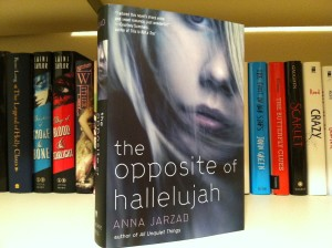 Young adult novel takes on religious themes