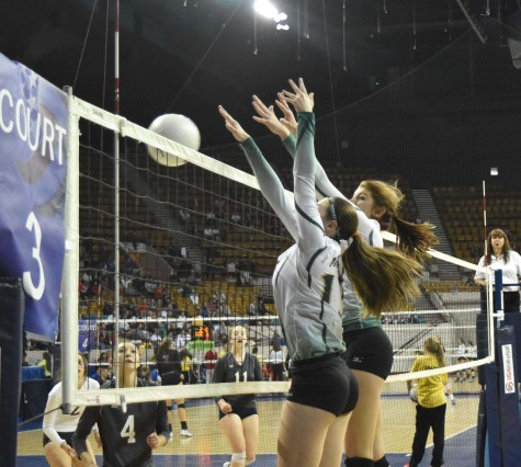 Volleyball Places 7th in Division