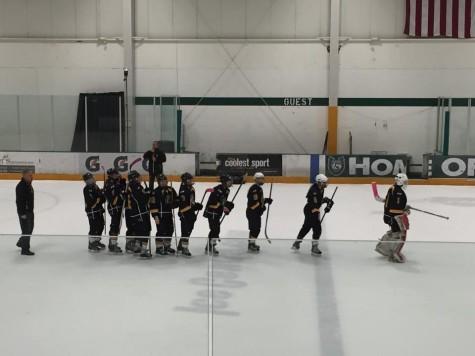 Hardworking Hockey Players Balance School and Sports