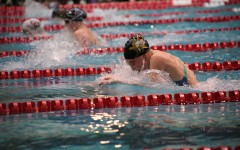 Sports Previews: A Look into the Lady Stangs' Upcoming Swim Season