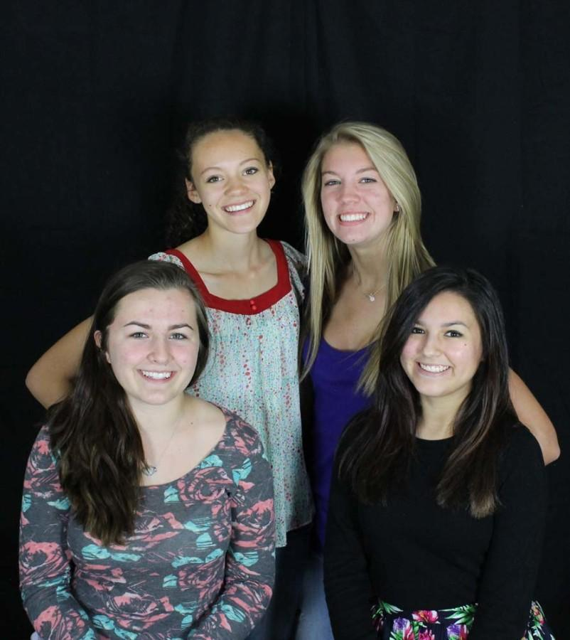 STUCO elects new executive board for 2015/2016 school year
