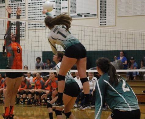 Volleyball Kills La Junta