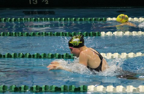 Season So Far: A Summary of the Lady Stangs' Current Swim Season