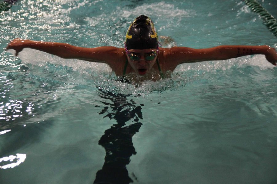 Swim Team Hosts Senior Night, Qualifies for State
