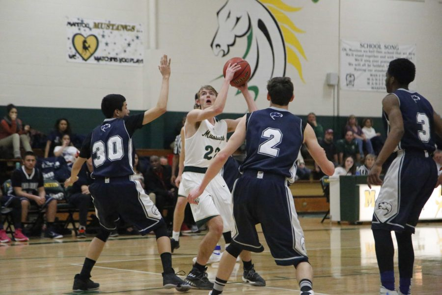 Boys Basketball Falls to Sterling