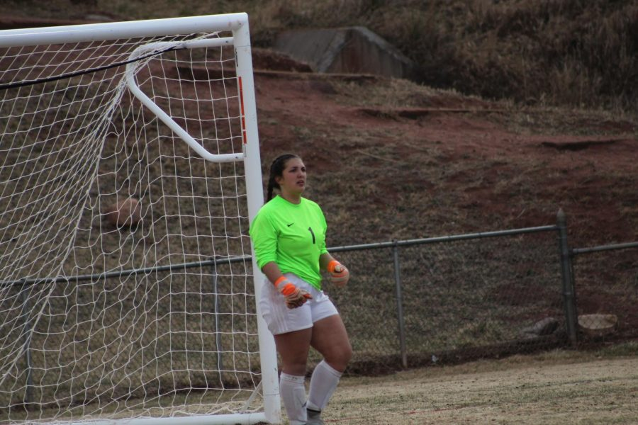 Alyssa Holladay (12) was an incredible force on the field, blocking several shots during the course of the game.