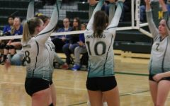 Volleyball Regionals: End of the Season for the Team