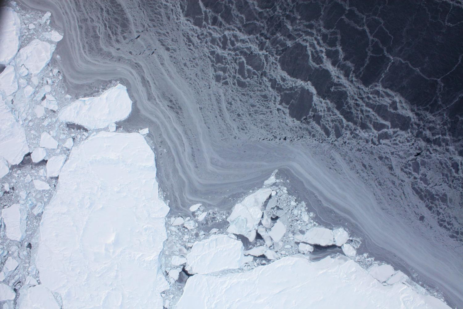 Satellite image showing thick and thin sea ice.