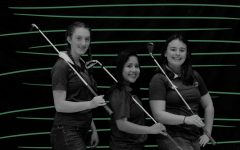 Spring Sports Preview: Girls' Golf